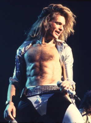 Yep David Lee Roth Named His Penis Amp Had It Insured By