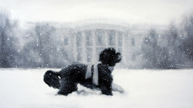 White_house_holiday_card_dm_121206_wmain