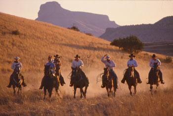 TX farmers