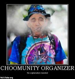 Choomunity-organizer-choom-choom-politics-1338438023
