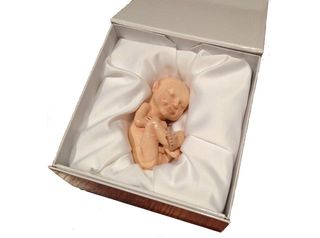Plastic Fetus-inline-packaging1