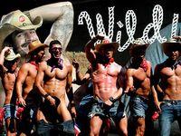 Gay-cowboys
